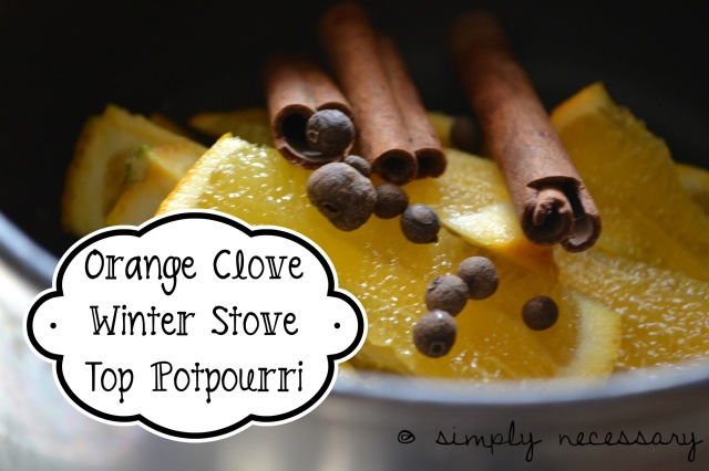 winter potpourri